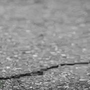 Resilienz: Blume, die aus dem Asphalt sprießt
